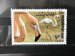 Afghanistan - Vogels (30000) 2000 - Afghanistan