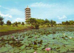 Singapore  Chinese Garden  Jurong - Singapore