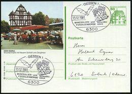 6300 GIESSEN 1/ MINERALIEN-u./ FOSSILIENBÖRSE/ KRISTALLHÖHLE/ KUBACH 1981 (13.12.) SSt = Mineralien (u. Fledermausl) Ort - Geologie