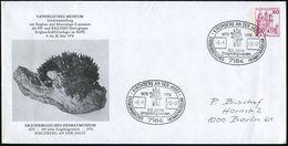 7184 KIRCHBERG AN DER JAGST/ ERZGEBIRGISCHES HEIMATMUSEUM.. 1978 (6.5.) SSt (Logo) Auf PU 50 Pf. Burgen: SANDELSCHES MUS - Geologie
