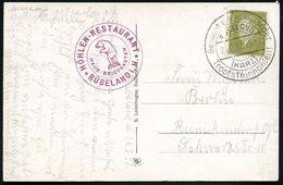 RÜBELAND/ (HARZ)/ Besucht D.Rübeländer/ Tropfsteinhöhlen! 1931 (Aug.) HWSt + Viol. HdN: HÖHLEN-RESTAURANT/ HAUS-BRIEFKAS - Géologie