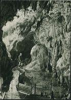 TSCHECHOSLOWAKEI 1949 1,50 Kc. BiP Gottwald, Braun: Demanskovské Jaskyne = Tropfsteinhöhle , Ungebr. (Pofis CPH 1-02) -  - Géologie