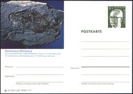 """863 Coburg 1973 30 Pf. BiP Heinemann: Naturmuseum, """"Schmelzschupper"""", 175 Millionen Jahre , Ungebr. (Mi.P 109) - PALÄONT - Geologie"""