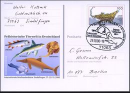 71063 SINDELFINGEN 1/ Prähistor./ Tiere.. 2000 (29.10.) SSt = Flug-, Land- U. Meeres-Saurier Auf Sonder-P 100 Pf. Grube  - Géologie