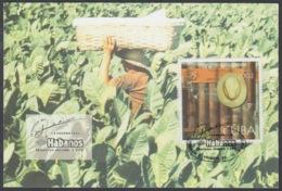 TMA-253 CUBA 2002 MAXIM CARD FESTIVAL DEL HABANO, TOBACCO PLANTING. - Tarjetas – Máxima
