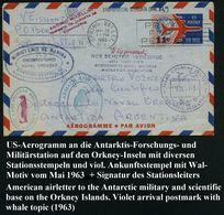 U.S.A. /  ARGENTINIEN 1963 (18.3.) Aerogramm 11 C., Gest. SPRING VALLEY, N.Y. An Den Leiter Der Antarktis-Station ISLAS  - Antarctic Expeditions