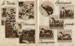 PEU COMMUN ! LIVRET 1930 13 PAGES 56 PHOTOS COURSES DE LEVRIERS COURBEVOIE PARIS HAUTS DE SEINE VIEUX PAPIERS LIVRES - Chiens