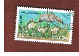 MOLDAVIA (MOLDOVA)   -  SG 303   -   1998  BIRDS: DEMOISELLE CRANE   -   USED - Moldova