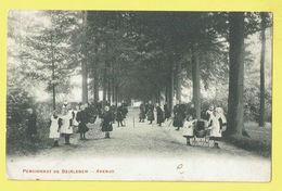 * Beirlegem - Beerlegem (Zwalm) * Pensionnat De Beirlegem, Avenue, Belle Animation, Enfants, école, School, Buggy - Zwalm