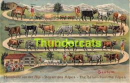 CPA EN RELIEF GAUFREE EMBOSSED VACHE COW AUSTRIA TIROL ALPES - Vaches