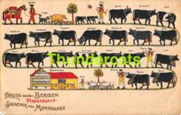 CPA  VACHE COW AUSTRIA TIROL ALPES GRUSS AUS DEN BERGEN ALPENFAHRT GUGGENHEIM ZURICH SUISSE ( PINHOLE - TROU DE PUNAISE - Vaches