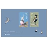 Ierland / Ireland - Postfris / MNH - Sheet Europa, Vogels 2019 - 1949-... Republiek Ierland