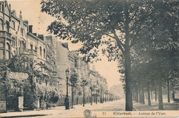 CPA - Belgique - Brussels - Bruxelles - Etterbeek - Avenue De L'Yser - Etterbeek