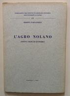 Ermete D'Arcangelo L'Agro Nolano Aspetti Umani Ed Economici Napoli 1967 - Libri, Riviste, Fumetti