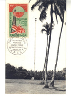 CPM  - . Cinquantenaire  Première  Liaison Radio Tahiti-France  .1er Jour 29/12/1965.  Carte N° 0415/1000- - Polynésie Française