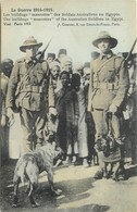 """AUSTRALIE - GUERRE 1915 - LES BULLDOGS """"MASCOTTES"""" DES SOLDATS AUSTRALIENS EN EGYPTE - Autres"""