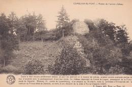 Comblain Au Pont Restes De L Ancien Chateau - Comblain-au-Pont