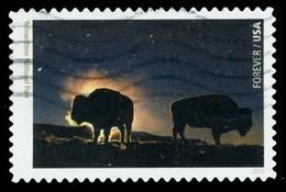 Etats-Unis / United States (Scott No.5080n - National Park Sercice 100e) (o) - Used Stamps