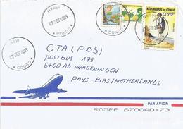 Congo 2005 Nkayi Marabou Stork Leptoptilos Crumeniferus Michel 1756 Fruit Cover - Congo - Brazzaville