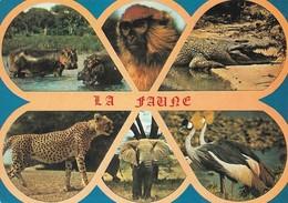 La Faune Africaine (2 Scans) - Otros