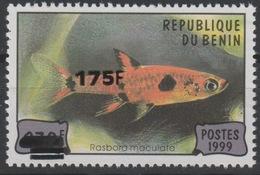 Bénin 2005 Mi. 1389 Rasbora Maculata Poisson Fish Fisch Faune Fauna Marine Surchargé Overprint MNH** - Bénin – Dahomey (1960-...)