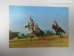 D163805 China Inner Mongolia - Traditional Sports - Horsemen - Horses -Cheval - Festival  Ca 1970's - Mongolia