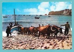 PORTUGAL NAZARE' ARRASTO DOS BARCOS 1967 - Portogallo