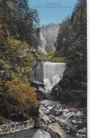 AK 0239  Dornbirn - Erster Wasserfall Bei Gütle / Verlag Rusch Um 1911 - Dornbirn