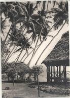 CPM SAMOA Au Bord Du Lagon Bleu - Samoa