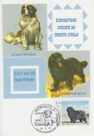 Carte  Maximum  1er  Jour    MONACO    Chien  :  Terre - Neuve    -   Saint - Bernard   1993 - Cani