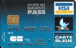 -CARTE+-PUCE-MAGNETIQUE-CB-SOCIETE DES PAIEMENTS PASS-VISA-Exp12/04-SCHLUMBERGER-12/02/-TBE-RARE - France