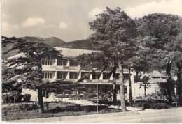 "MONTENEGRO - TIVAT : Hotel "" MIMOZA "" - CPSM Dentelée Noir Et Blanc Grand Format 1962 -  Ex Yougoslavie - Montenegro"