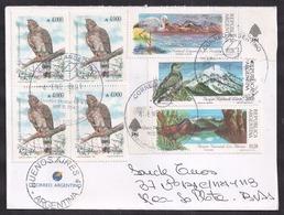 Argentina - 1990 - Lettre - Moine Aigle - Aigle Noir - Oiseaux - Aigles & Rapaces Diurnes