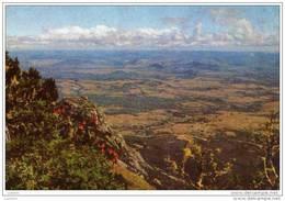 Zimbabwe Ynyanga ( 2 Scans ) - Zimbabwe