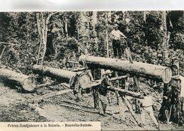 NOUVELLE GUINEE(SCIERIE) BOIS - Papua New Guinea