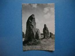 CARNAC  -  56  -  Alignements Mégalithiques De Kermario  -  MORBIHAN - Carnac