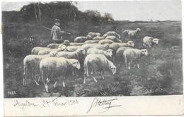 ANGOULEME: 27 FEVRIER 1906 - Angouleme
