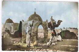 Les Tombeaux Des Rois - Nr 922 - Camel - Dromedaris  -  Kameel - Túnez