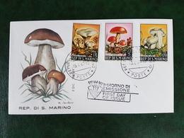 (39037) F.D.C. SAN MARINO 1967 - FDC
