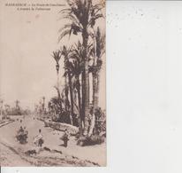 MARRAKECH  -  La Route De Casablanca à Travers La Palmeraie  - - Marrakech