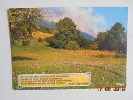 La France Poetique. Ode De Victor Hugo. CIM E FP999 000.0025 - Philosophy