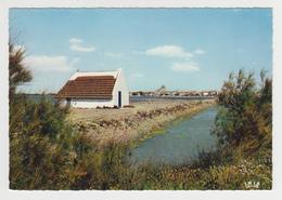 AA212 - CAMARGUE - Près Des Marais, Une Cabane Toute Blanche Au Toit De Roseaux - Frankreich
