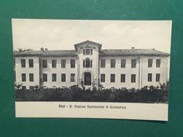 Cartolina Rieti - R. Stazione Sperimentale Di Granicoltura - 1925 Ca. - Rieti