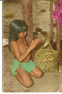 GUYANE / INDIENNE EPLUCHANT UN FRUIT SAUVAGE - Guyane