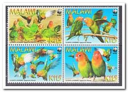 Malawi 2009, Postfris MNH, Birds, WWF - Malawi (1964-...)