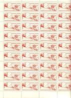 Planche De 63 Vignettes De L'opération Boule De Neige De 1996 - Commemorative Labels