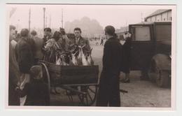 AA225 - CONCARNEAU - Photo Format Carte Postale - Vente De Thons Sur Le Port - Concarneau