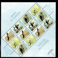 770130233 1996 SCOTT 1591 1592 1593 1594 POSTFRIS  MINT NEVER HINGED EINWANDFREI  (XX) - BIRDS IN SHEET - 1952-.... Règne D'Elizabeth II