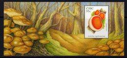 Ireland 2008 Fungi MS, MNH, SG 1913 - Ungebraucht