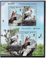 Belarus. 2019 Europa Cept. National Birds. Fauna, Storks . S/S Of 4 - Belarus